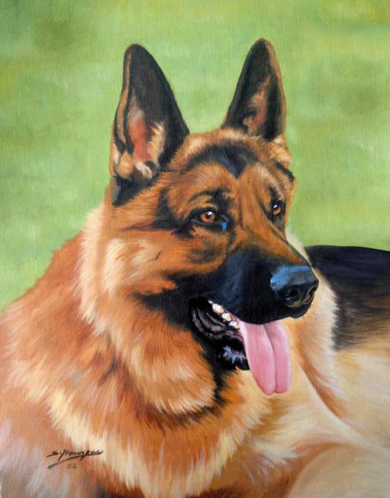 Rin Tin Tin by wisewyn